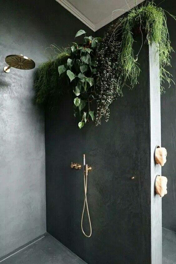 bathroom grey concrete floor, concrete wall, shower, plants on top