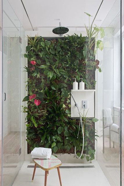 bathroom white floor, ceiling shower, shower on the middle, plants, glass partition