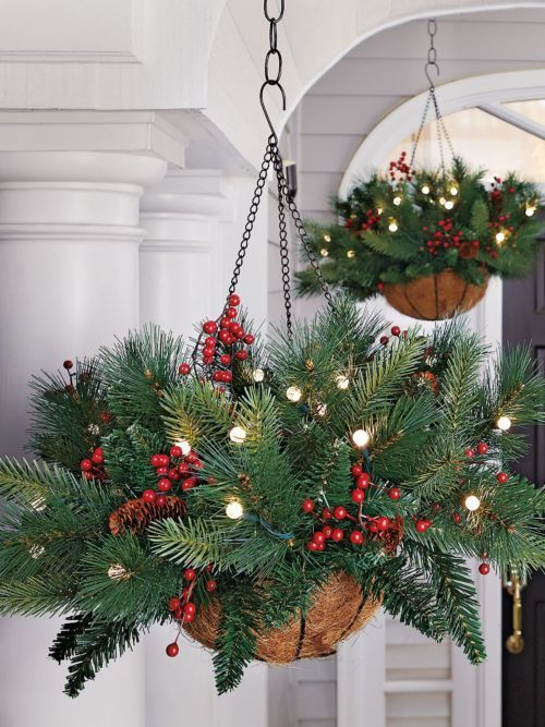 christmas ornament with green pine leaves, small holly berries, in a coconut fiber pot hung from the ceiling