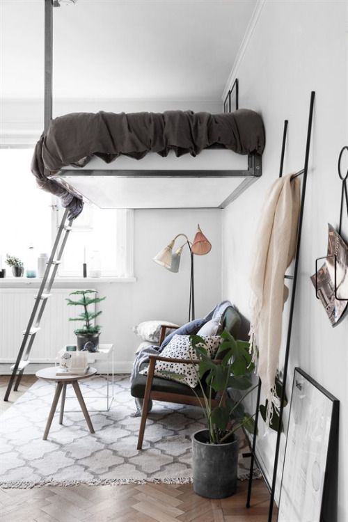 floating bed, rug, living area under the bed, plants, window