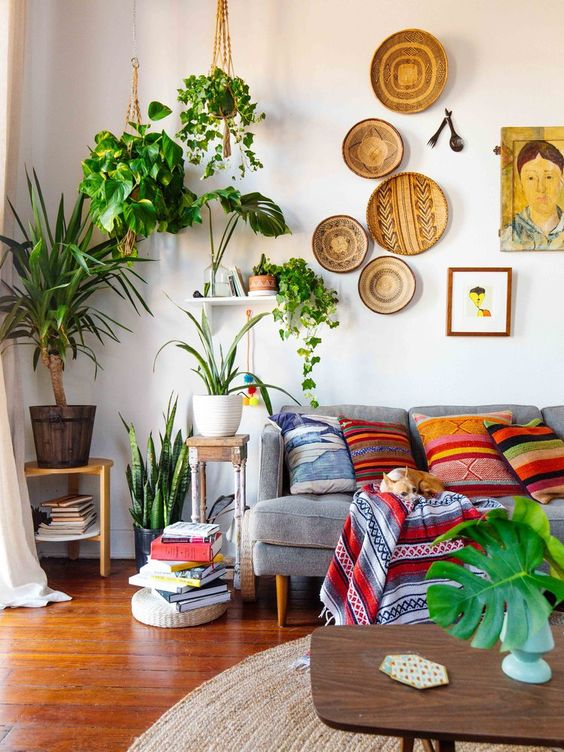 living room with wooden floor, grey sofa, colorful pillows, coffeetable, side table, wall accessories, plants on the table, from the ceiling, rattan rug