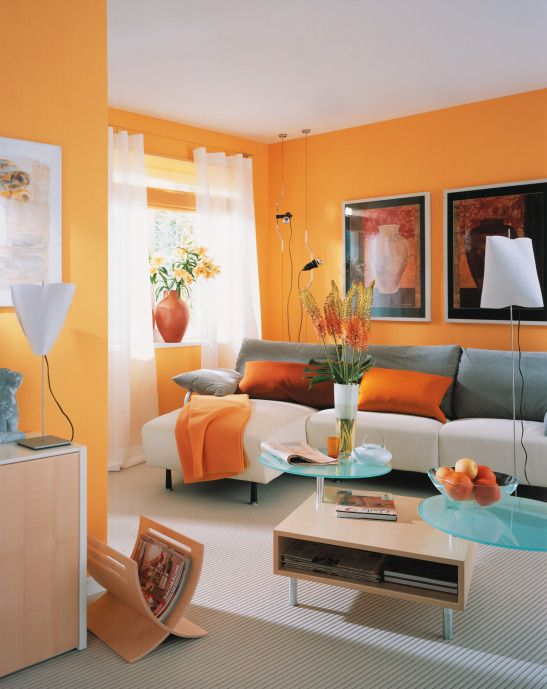 living room, gery floor, white grey sofa, orange pillows, orange wall, white curtain, wooden and blue coffee table