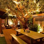Patio With Floor Tiles, Continued Wooden Table Bench, Fairy Lights On Tree, Rattan Swing Chair