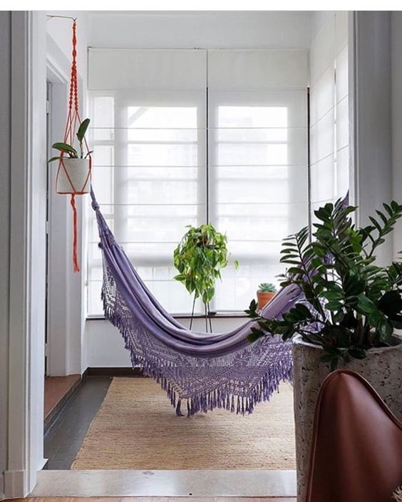 purple hammock on the hall, brown rug, white wall, white shade, plants