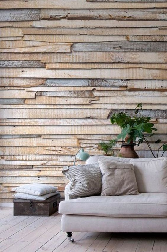 reclaimed wood covering wall, wooden floor, beige sofa, plants on pot