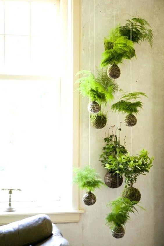 Kokedama hanging plant in bedroom for indoor urban gardening