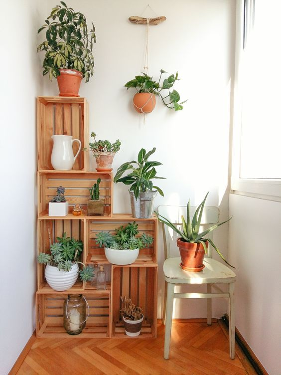 affordable diy shelf planter for indoor garden from wood crate in house corner