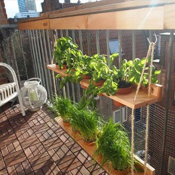 hung wooden shelves with pots hole and plants, hung by rope on wooden rail, wooden floor