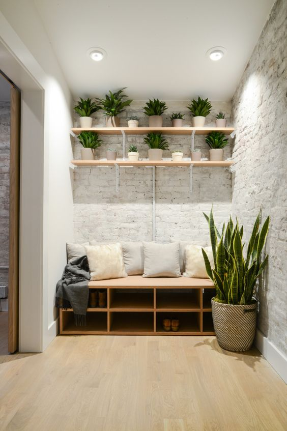 potted plants in above shelf to refresh reading corner