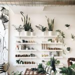 White Wooden Floating Shelves For Plants