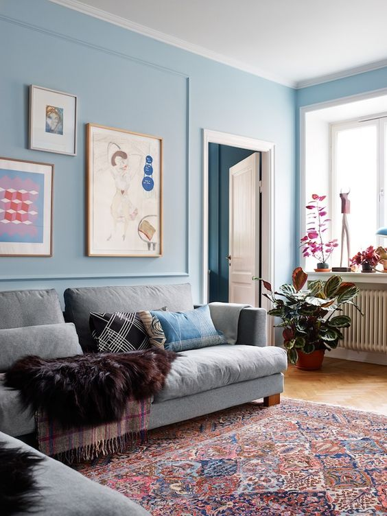 living room, wooden floor, blue wall, white ceiling,  grey sofa, red rug