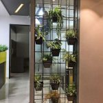 Metal Plant Rack Divider With Plants, Yellow Ceiling, Yellow Divider With Plants