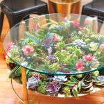 Terrarium Glass Coffee Table, Wooden Floor, Black Chairs
