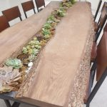 Wooden Slab Dining Table With Plants In The Middle, Wooden Chairs,
