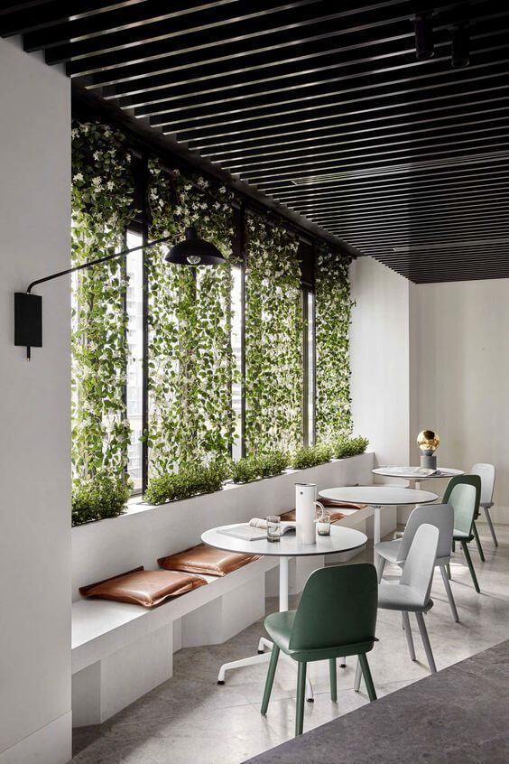 dining room, grey seamless floor, white wall, green plants, black ceiling, white bench, white round table, modern chairs, black sconce