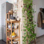 Vines On The Wall And Rack, Open Brick Kitchen, Wooden Floor, Black Floor
