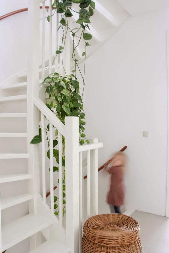 white stairs, rattan basket, vines on the stairs