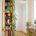 Wooden Bookshelves, Vines From The Top, White Wall, White Door, Wooden Floor