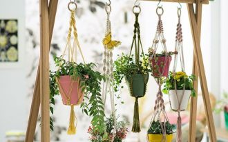 wooden racks for pots of plants