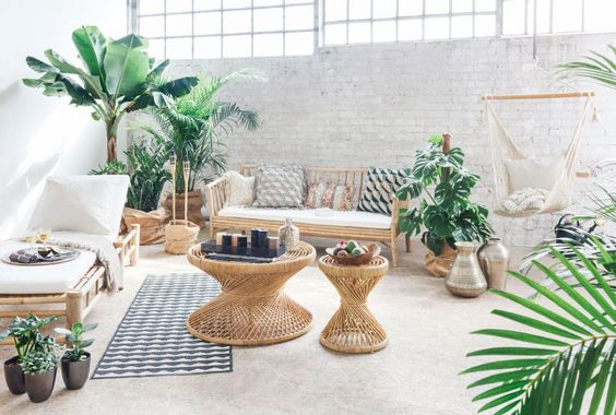 living room, grey seamless floor, bamboo bench with white cushion, bamboo lounge chair white cushion, plants, rattan coffee table