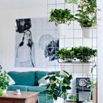 Metal Wire With White Small Pots, Wooden Floor, Rug, Green Sofa, Wooden Coffee Table