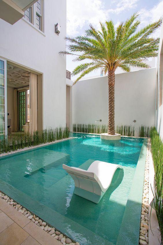 pool, brown marble, white stones, palm tree, white wall