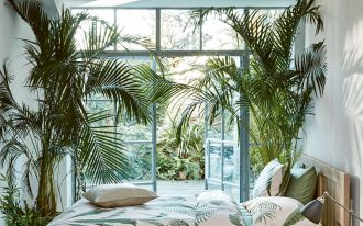 bedroom, white wooden floor, white wall, palm plants, wooden bed platform, glass window