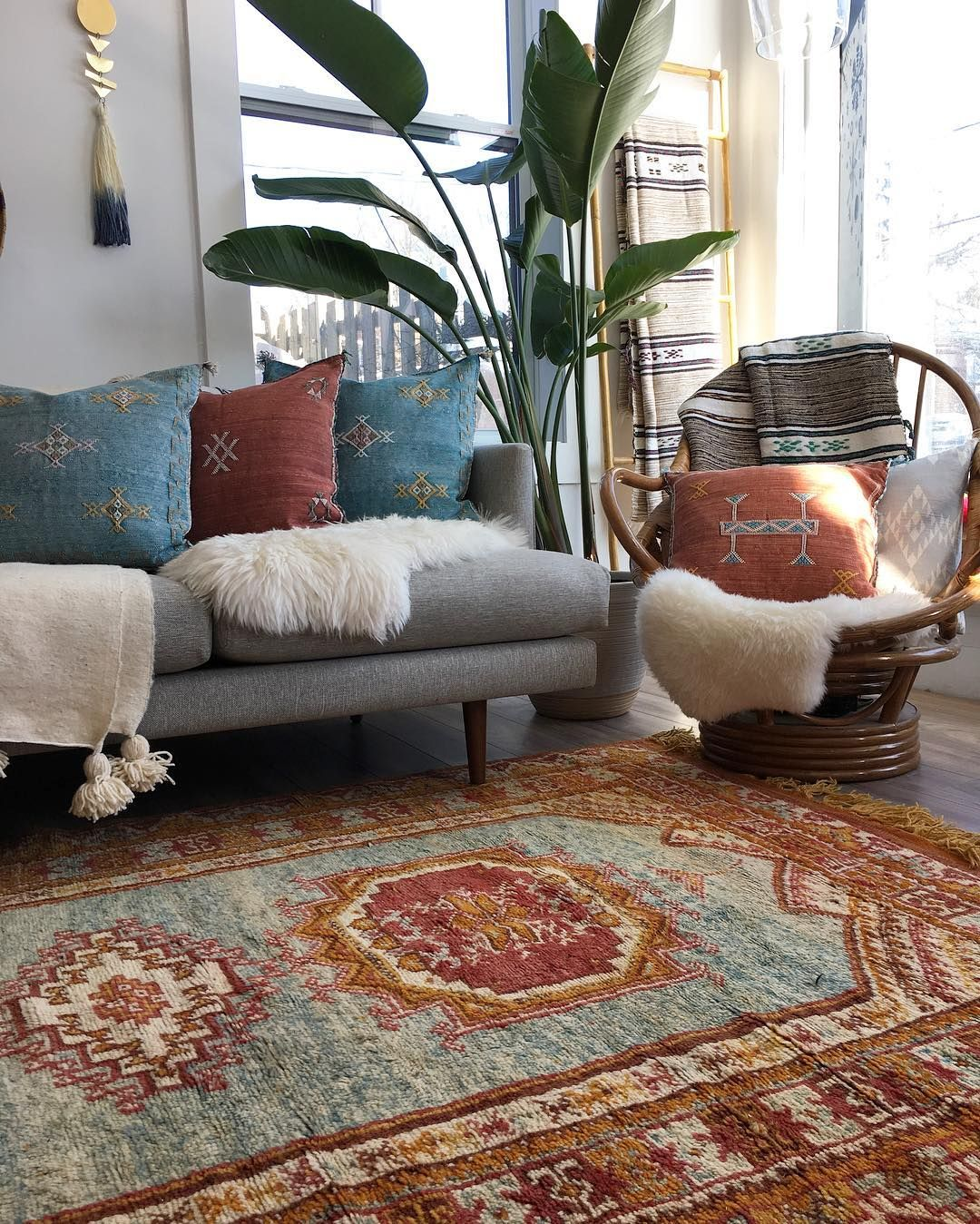 living room, wooden floor, patterned rug, grey sofa, rattan chair, white wall, plants