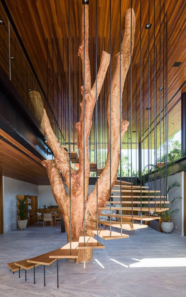 wooden stairs, metal fences from the ceiling, grey floor, tree branches in the middle