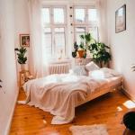 Bedroom, Wooden Floor, White Wall, Wooden Bed Platform, Windows