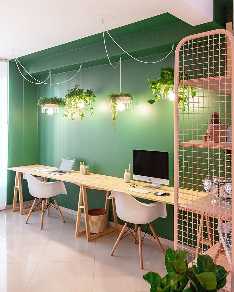 home office, grey floor, green wall, white wall, white office chair, wooden long table, hanging plant lamp, pink shelves