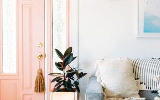 entrance, pink door, white wall, blue velvet sofa, wooden floor, side pot