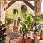 Patio, Wooden Floor, Rattan Chair, Plants Pot, Hanging Plants
